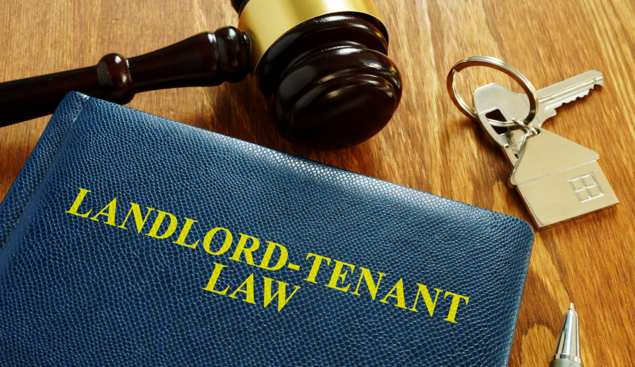 Estates and Tenancies, Non-Freehold or Leasehold Estates